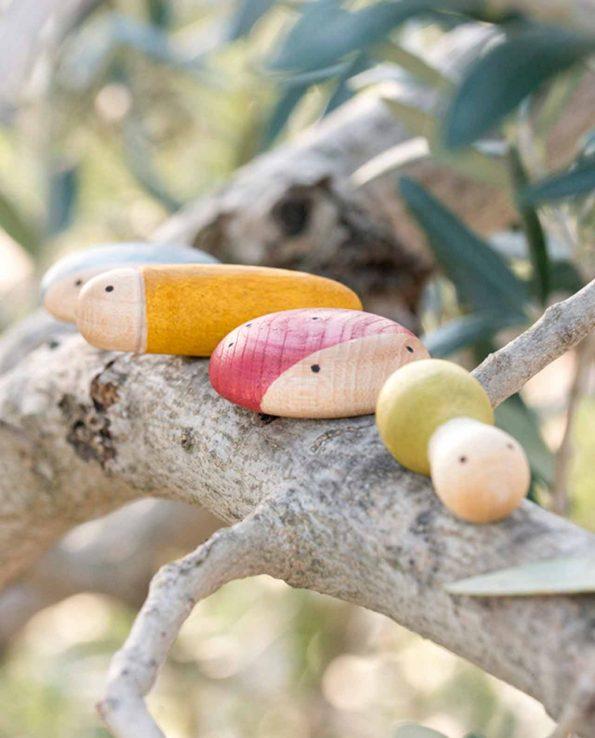 Insectos de madera de Grapat