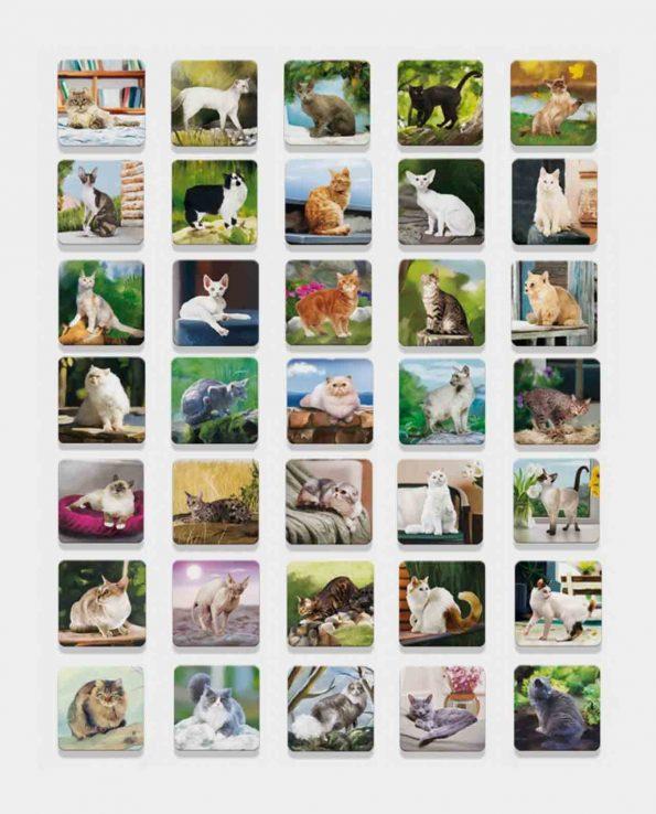 Juego de memoria para niños con fotos de gatos Memoria Dogs de Ludattica